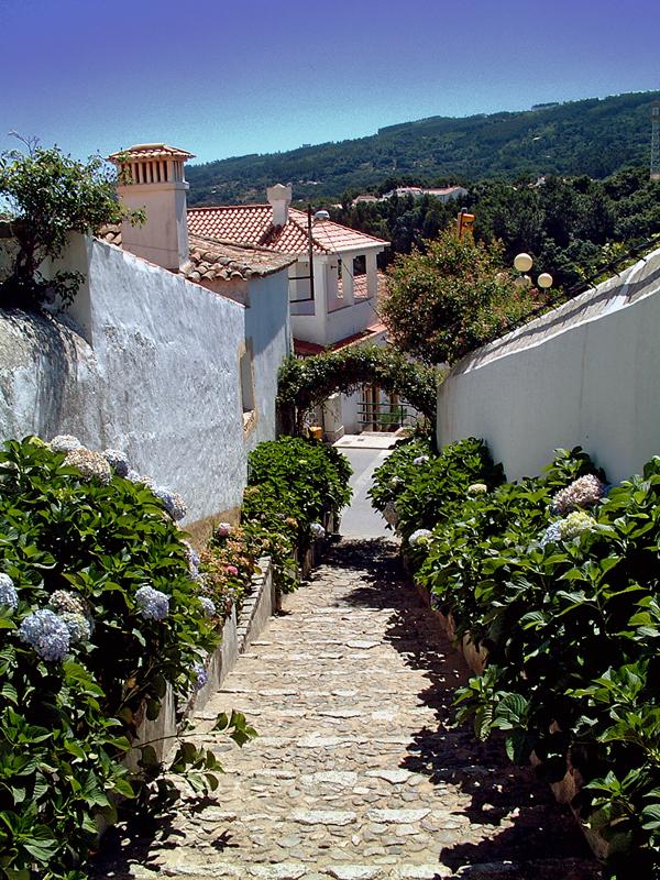 Monchique Algarve Travel Guide